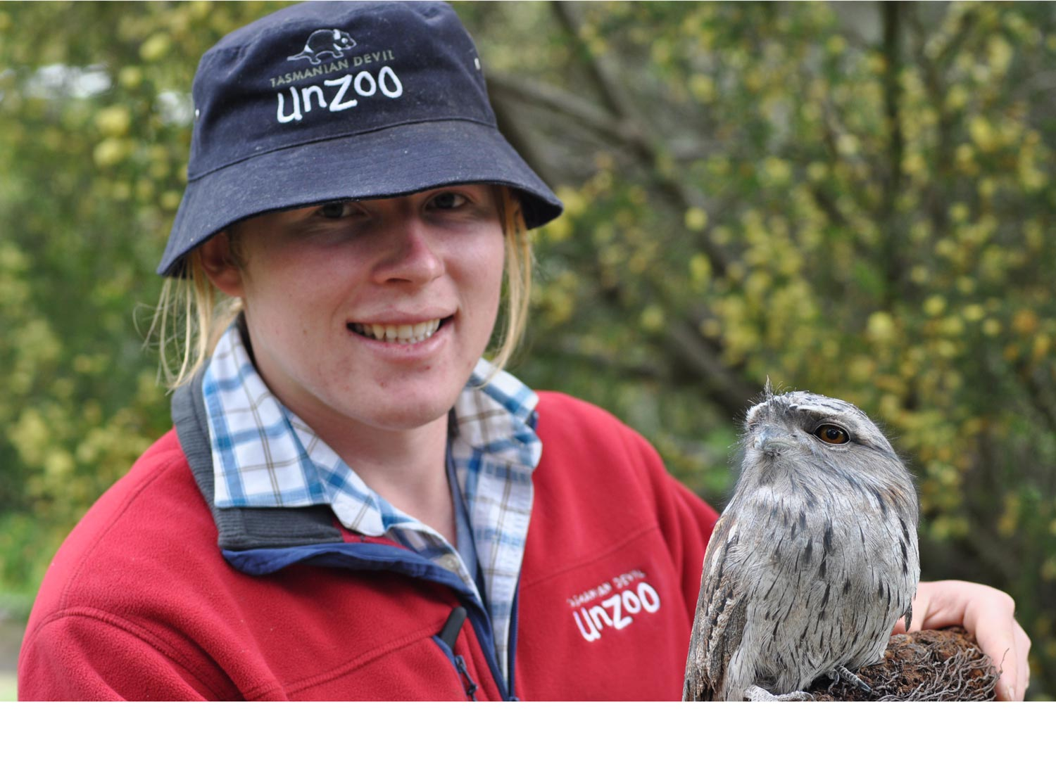 Unzoo Employee with Tawny frogmouth owl